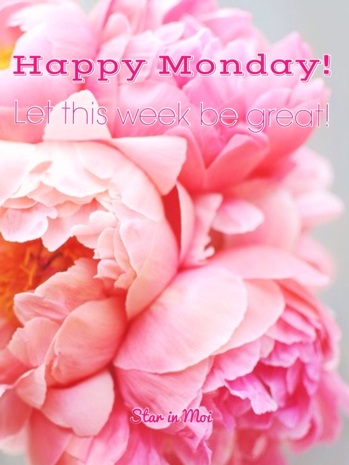 Happy monday star in moi the weekend has come and gone and its time to start a brand new week whos ready voltagebd Images